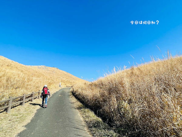 平尾台ハイキング③