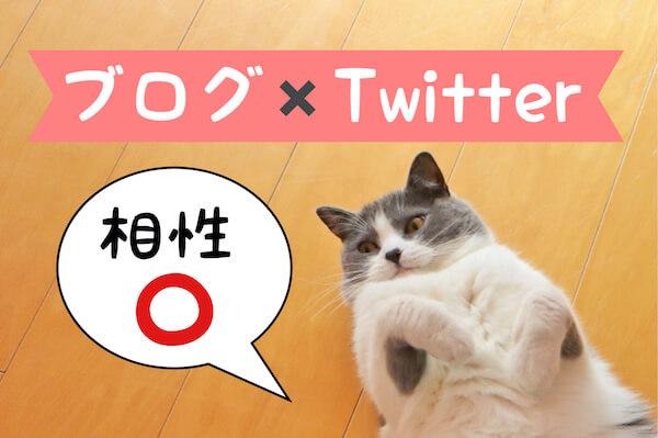 ツイッターとブログは同時に開設がオススメ