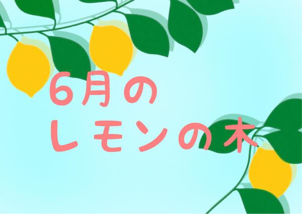 6月のレモンの木の記録
